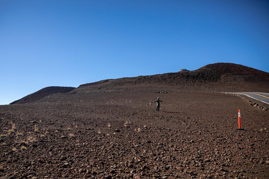Silversword-Planting-Haleakala-Oct3020-013