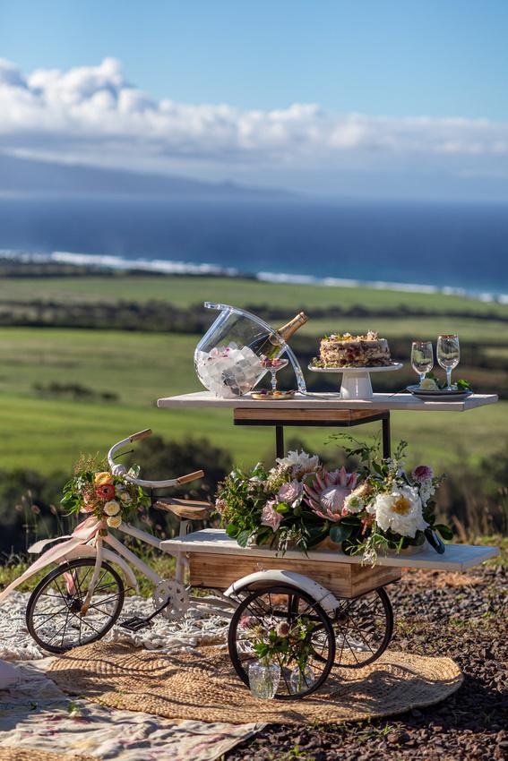 CvetaDesigns-MauiLuxePicnics-MadelynneLorraine-Maui-Weddings-099